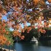 【カナダの秋の公園】ラ・フォンティーヌとサン・ドニ