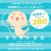 【マタニティライフ】家族で妊娠期間を共有出来る!アプリ『トツキトウカ』がオススメ♪