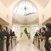 視覚探偵 日暮旅人!亀吉がウエディングドレスで福田悠太とキス!
