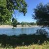 American river PARKWAY half marathon 走ってきました(レース編)