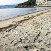 「また殺人」…湖岸の2事件、関連を捜査
