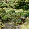 古稀庵の泉水(神奈川県小田原)