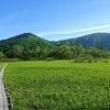 【初めてでも大丈夫】高尾山の次に挑戦したい初心者におすすめの山