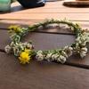シロツメクサで簡単☆花かんむり作り からのしみじみ感じたこと