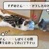 猫の病気 ~すずめの血液検査~