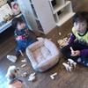 今日から12月そして入荷日♪☆spoon☆は朝から大人から子供からワンコまで賑やか空間(*^^*)♪