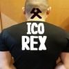 ICO情報 REX(レックス)