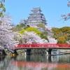 世界遺産・姫路城とブルーインパルス 千姫の悲哀