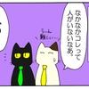 プロジェクトCat(7)~虹の橋の向こう~