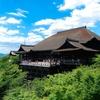 穴場!今、京都に来るなら三条会商店街が面白いです!
