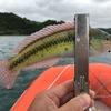 ゴムボート釣行 ②-2