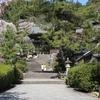 奈良県のおススメ桜スポット! 長谷寺の桜