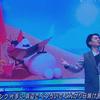 【動画】武内駿輔がMステ(2019年11月22日)に登場!「あこがれの夏」を披露!