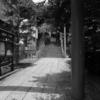 【今日の1枚】静かな住宅街、脇道の先にも神社があった