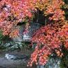 香嵐渓もみじまつりで深まる秋を感じる旅 <愛知県・豊田市>