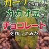 同人誌3作目「ガーナで収穫したカカオ豆でチョコレートを作ってみた」の反省点