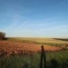 スペイン巡礼:【Day 22】Ledigos → Calzada del Coto (22km)