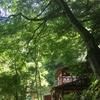 西寺水神公園|森林浴とそうめん流しが楽しめる夏の隠れ家