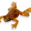 【ティムコ】夏の虫パターンではなくカエルパターンに!「野良ガエル」に新色追加!