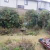 出遅れた富士山の写真