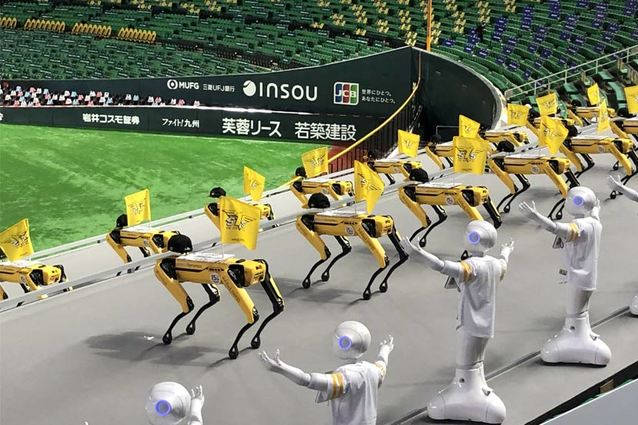 """That's Robot Entertainment! """"Pepper"""" and """"Spot"""" Team Up to Cheer on the SoftBank HAWKS"""