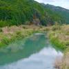 母川のオオウナギ生息地(徳島県海陽)