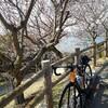 サカヲノボル 其の一 〜世界の梅公園へTAKE OUT de ピクニックライド〜
