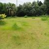 塩川(しおかわ)の空き地