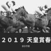 【競馬】2019天皇賞春の前日予想