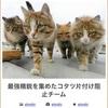 最強精鋭を集めたコタツ片付け阻止チーム #ボケて   http://bokete.jp/boke/48759272