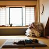 飛騨高山「ひだホテルプラザ」は子連れ旅行に優しいステキなホテルでした!