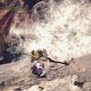 MONSTER HUNTER WORLD ICEBORNE:PS4版:『歴戦ネロミェール』で太刀修行