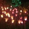 【観光】バンデューセン植物園でロマンチックな夜を過ごす(バンクーバー)