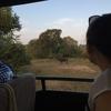 スリランカその7・テッィサマハラーマ〜ヤーラ国立公園
