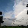 「虹のような日々」