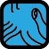 今日は、キン175青い鷲 白い犬 音6の1日です。