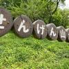 浅間山公園のムサシノキスゲ。