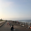 東扇島西公園 釣果 2017年7月9日