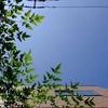 作曲工房 定点観察 2017-07-15(土)レッスン集中日 暑さ続く