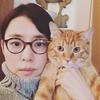 石田ゆり子の猫の種類!ビスク&雑種は何?