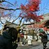 秋の古寺めぐり2