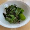 ベビーリーフと海苔のサラダのレシピ!