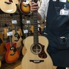 小ぶりなギターが横須賀で流行っている説