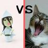 【猫は幽霊を追い払う】ってマジ?|猫魔除け説vsオバケの真実!