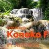ジャマイカに行きました③オールインクルーシブの無料アクティビティでKonoko Fallsへ