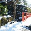 ☆京都大原:水墨画の世界 実光院の不断桜
