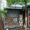 草ぼうぼう芒種の庭に小屋作る(あ)