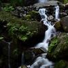 【カメラと出かける】養老の滝(岐阜)で新緑と滝を撮る〜初めてNDフィルターを使いました!〜
