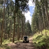 笠形山の林道 兵庫県多可郡