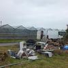 義父の農場でガラスを切る!やっとグリーンハウスが完成。
